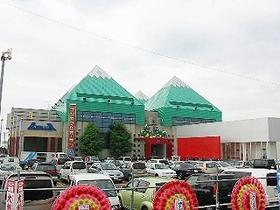 ishikawa-dasullar-tsubata-nice-pachinko-slot