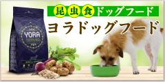 yora-dogfood